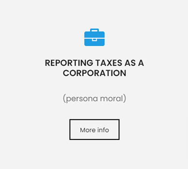REPORTING TAXES AS A CORPORATION